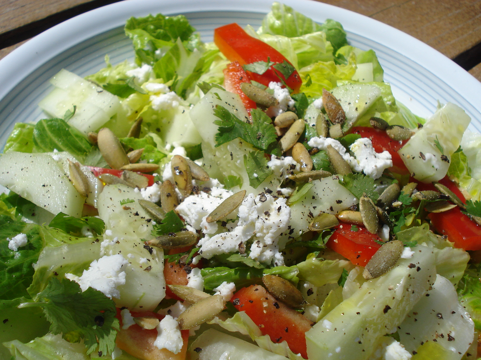 03-19-09-salad004