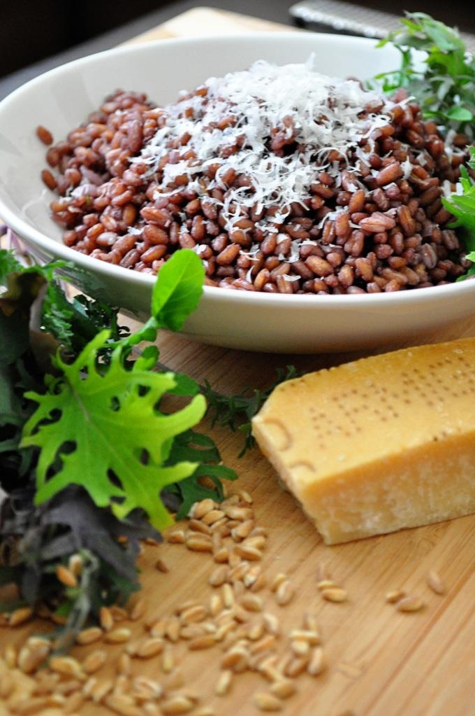 red wine farro risotto