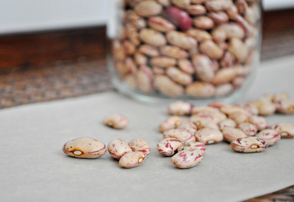 Borlotti Beans dried
