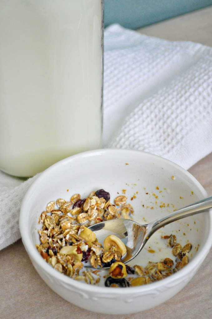 Cherry Hazelnut Muesli 4